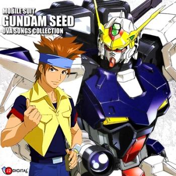 Gundam Seed MSV Astray Stargazer & Gundam Evolve